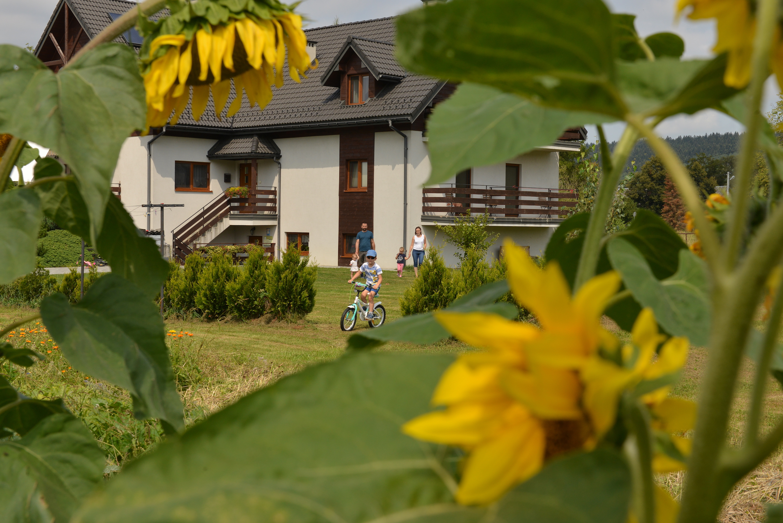 Dom ze spadzistym dachem i białymi ścianami, na pierwszym planie słoneczniki