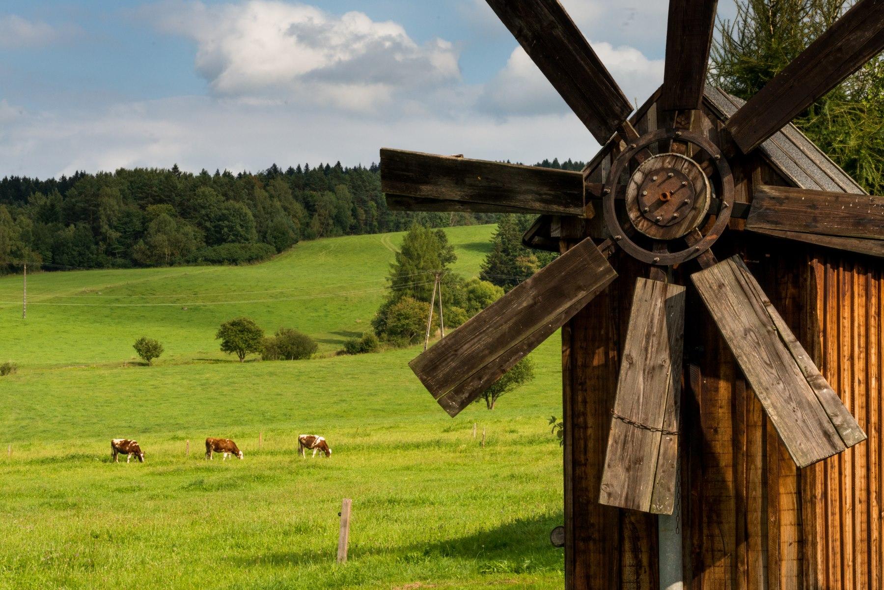 Widok na góry, na pierwszym planie drewniany wiatrak