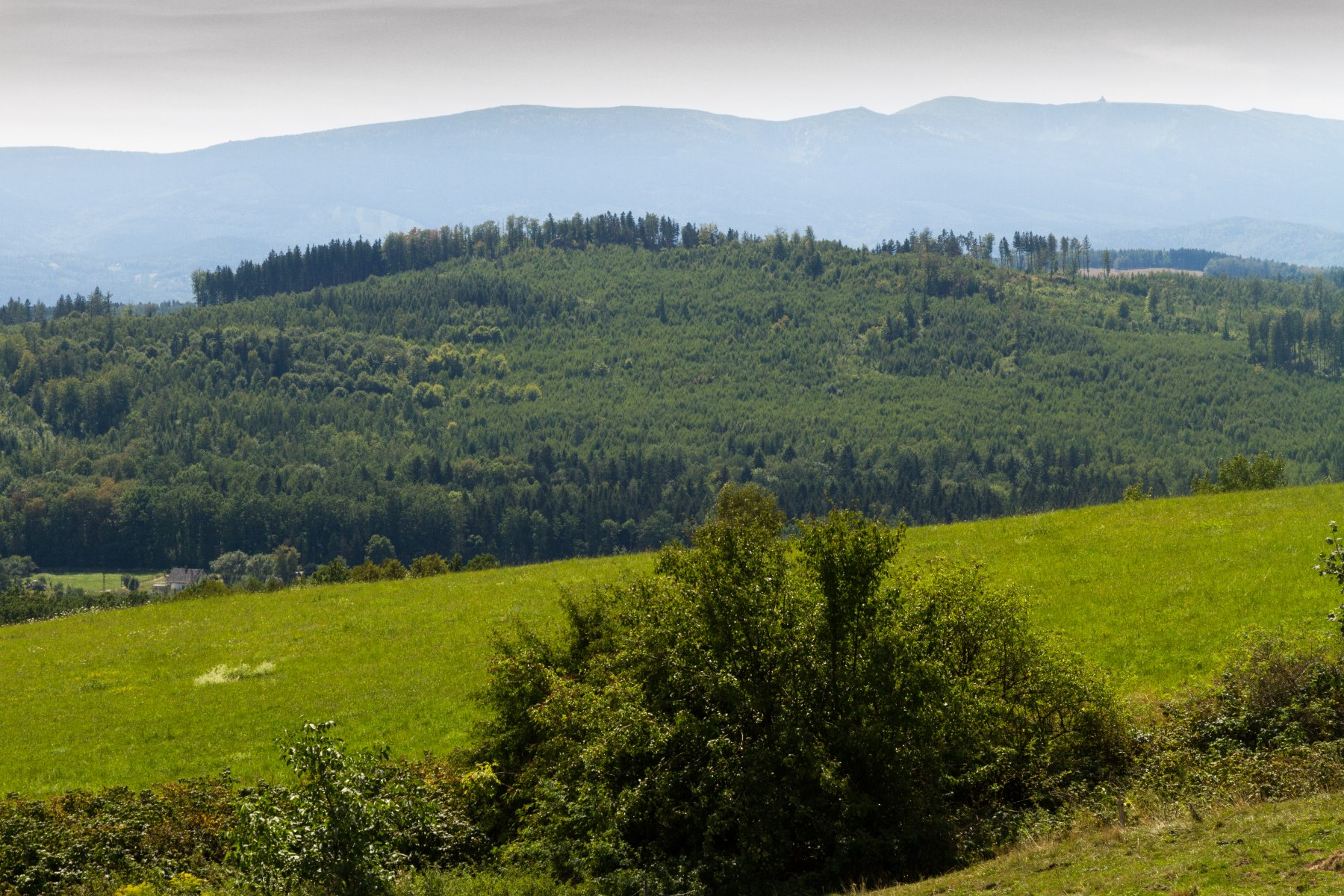 Widok na pasmo gór w Sudetach