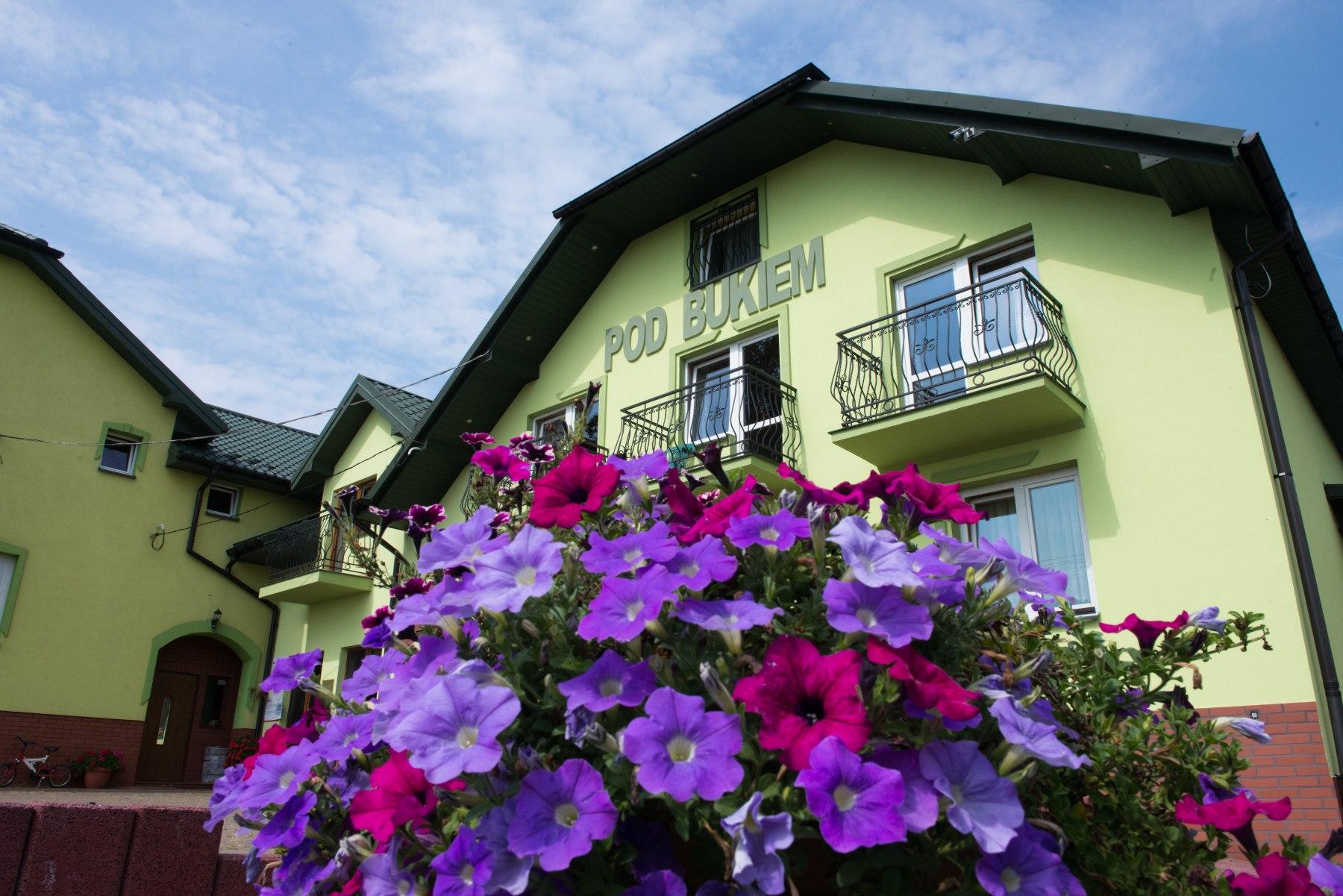Dom z zieloną elewacją, na pierwszym planie kwiaty