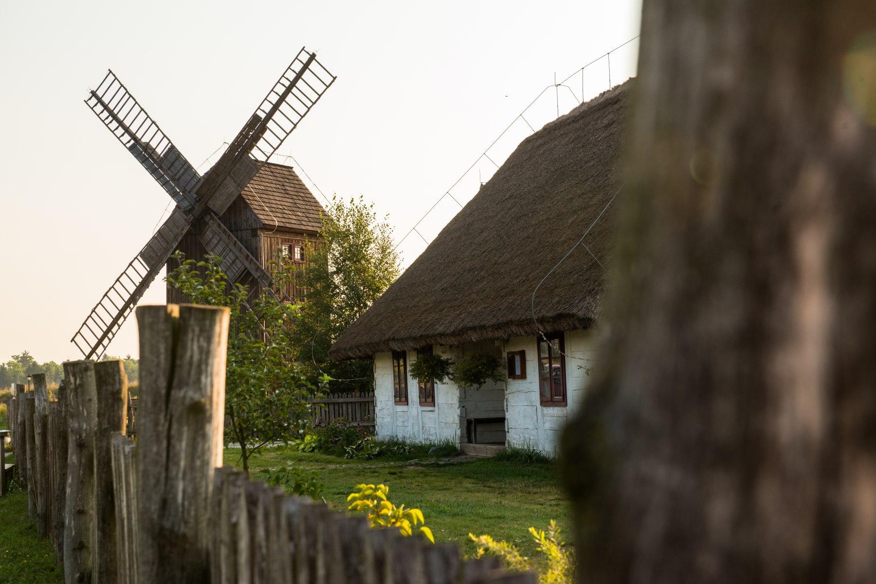 Drewniana chata kryta słomą, w tle drewniany wiatrak